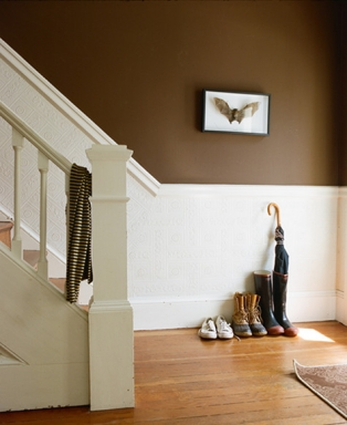 Design sponge brown bat stairs